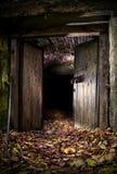 Entrata scura della caverna Immagini Stock Libere da Diritti