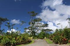 Entrata tropicale del parco delle Hawai McKenzie Fotografia Stock