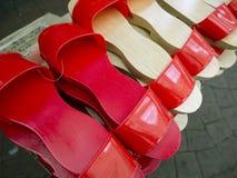 Entrave, chaussure en bois-soled image libre de droits