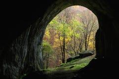Entrée de caverne Photographie stock