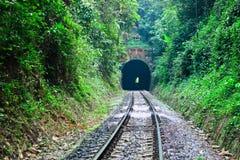 Entre el túnel, viaje con el ferrocarril Imágenes de archivo libres de regalías
