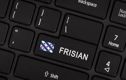Entre en el botón con la bandera Frisia - concepto de lengua fotografía de archivo