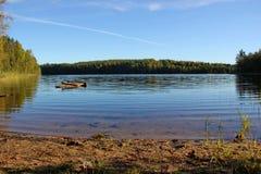 Entre a floresta do lago Fotos de Stock