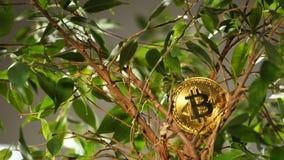 entre la moneda de oro de las hojas hecha por el recurso valioso Bitcoin