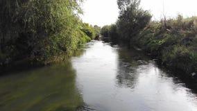 Entre les rivages de la rivière de Tysmenytsya, contamination des déchets du raffinage de pétrole Lissez la mouche en surface et  banque de vidéos