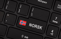 Entre no botão com bandeira Noruega - conceito da língua Foto de Stock Royalty Free
