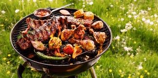 Entrecostos de porco picantes e churrasco da galinha em um BBQ imagem de stock royalty free