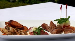 Entree Tasting Plate Stock Photography
