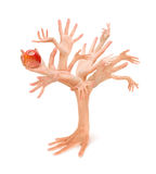 Entrega a árvore Imagens de Stock