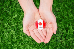 Entrega as palmas que guardam em volta do crachá com a folha de bordo canadense branca vermelha da bandeira na grama verde Imagens de Stock Royalty Free