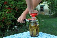 Entrega a mulher em uma exploração agrícola contratada em pepinos de colocação em latas Fotos de Stock Royalty Free