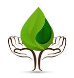 Entrega o logotipo da forma de folha das gotas da água da árvore Imagens de Stock