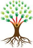 Entrega a árvore com raiz Fotos de Stock Royalty Free