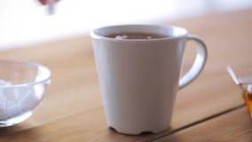 Entregue a adição do açúcar ao copo do chá ou do café filme