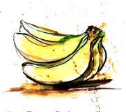 Entregue a aquarela real tirada e cubra o esboço da refeição matinal amarela dos vagabundos ilustração stock