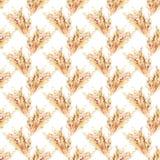 Entregue a aquarela tirada o teste padr?o repetido sem emenda com as orelhas do trigo do amarelo do outono spikelets da ilustra?? ilustração stock