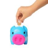 Entregue a colocação do dinheiro no porco da economia, tema da finança fotografia de stock