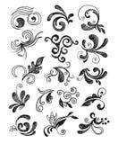 Entregue elementos florais desenhados Fotografia de Stock Royalty Free
