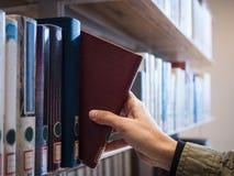 Entregue a escolha do livro da educação da biblioteca da biblioteca Foto de Stock