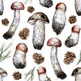 Entregue a estilo do desenho a ilustração sem emenda dos cogumelos, dos cones do pinho e das abeto-agulhas Imagens de Stock Royalty Free