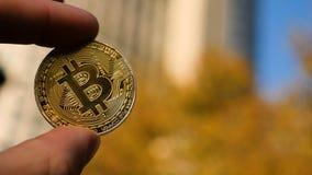 Entregue guardar a moeda de ouro de Bitcoin e a construção do negócio no fundo Imagem de Stock Royalty Free