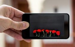 Entregue guardar o smartphone com imagem do ramalhete de cravos vermelhos Foto de Stock