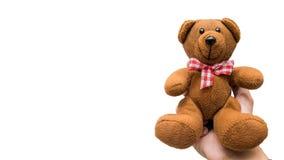 Entregue guardar o urso de peluche no fundo branco, Grampeamento-trajeto Fotos de Stock Royalty Free