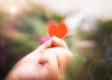 Entregue guardar uma forma do coração com fundo obscuro Fotos de Stock Royalty Free