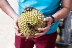 Entregue guardar a variedade recentemente colhida do durian do rei do musang Imagem de Stock Royalty Free