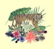 Entregue a ilustração tirada da aquarela do vintage com tigre, penas, flores, folhas Foto de Stock Royalty Free