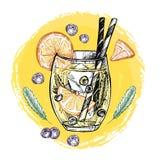 Entregue a ilustração tirada do vetor - a limonada com mirtilo, mint a Fotografia de Stock