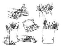 Entregue a ilustração tirada do vetor - saco de compras com alimento saudável ilustração do vetor