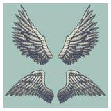 Entregue a ilustração tirada do vintage do vetor - esboço naturalista das asas da propagação ilustração royalty free