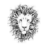 Entregue a leões tirados a cabeça isolada no fundo branco Fotos de Stock