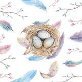 Entregue o ninho tirado com ovos, projeto do pássaro da arte da aquarela de easter Foto de Stock Royalty Free