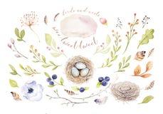Entregue o pássaro e ovos de tiragem dos desenhos animados do voo da aquarela de easter com folhas, ramos e penas Arte da mola do ilustração royalty free