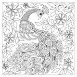 Entregue o pavão tirado para a anti página da coloração do esforço Fotografia de Stock Royalty Free