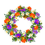 Entregue o quadro gráfico elegante e romântico tirado da flor com cores pastel do llight com a prímula alaranjada e azul ilustração do vetor