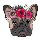Entregue o retrato tirado de um buldogue francês com a grinalda das flores ilustração stock