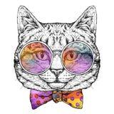 Entregue o retrato tirado do gato nos vidros com laço Ilustração do vetor isolada no branco Imagens de Stock
