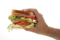 Entregue o sanduíche da terra arrendada fotografia de stock royalty free