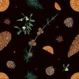 Entregue o teste padrão sem emenda tirado com partes de plantas do Natal no fundo preto - visco, ramos de árvores coníferas ilustração stock