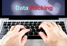 Entregue o tipo no portátil com os dados que cortam na tela com backgr do borrão Fotos de Stock Royalty Free