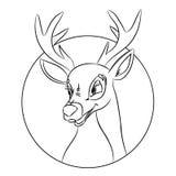 Entregue a página tirada da coloração da cabeça dos cervos, imagem feita no estilo clássico dos desenhos animados Fotos de Stock Royalty Free