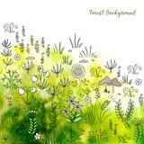 Entregue plantas e a grama tiradas da floresta no fundo fresco da aquarela ilustração do vetor