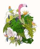 Entregue ramos e as folhas tirados de plantas tropicais Grupo floral monocromático com pássaro Flamingo, papagaio, cacatua preto Fotos de Stock Royalty Free