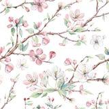 Entregue ramos e flores tirados de árvore da maçã teste padrão sem emenda Imagens de Stock