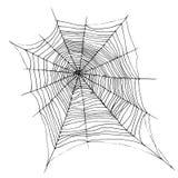 Entregue a Web de aranha bonita decorativa de tiragem, chiqueiro do esboço dos desenhos animados ilustração royalty free