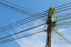 Entrelazamiento de muchos alambres eléctricos en polos Fotografía de archivo libre de regalías