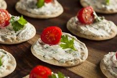 Entremeses de la galleta y del queso Foto de archivo